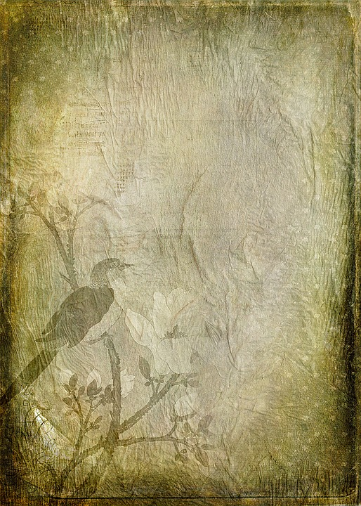Free Illustration Texture Paper Green Free Image On