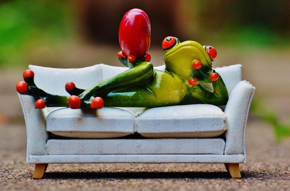 Gratis foto kikker liefde sofa hart figuur gratis for Funny sofa pictures