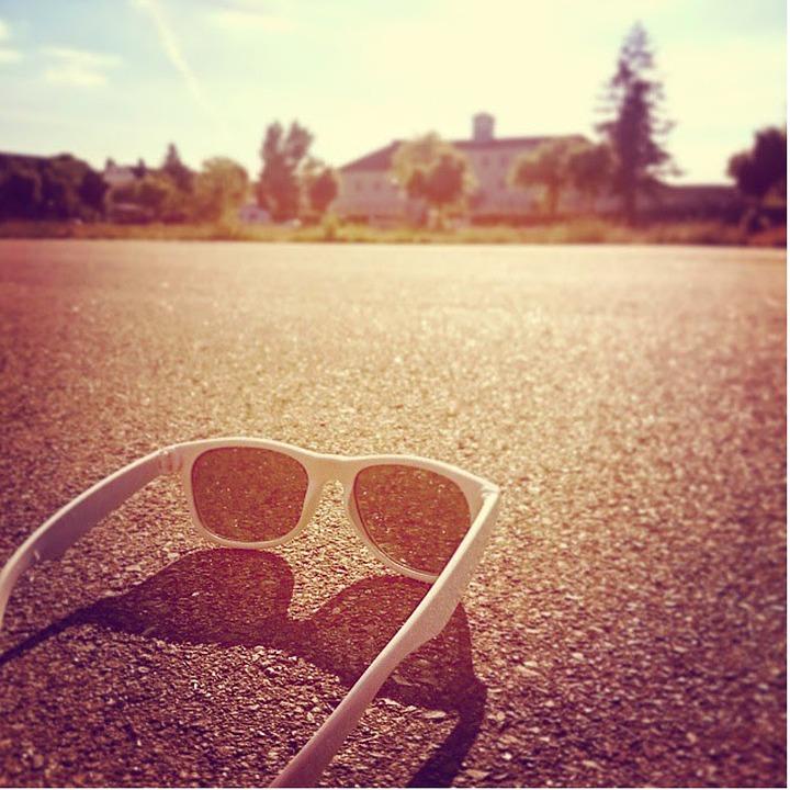 2cc8056d130d Briller Sun Solbriller - Gratis foto på Pixabay