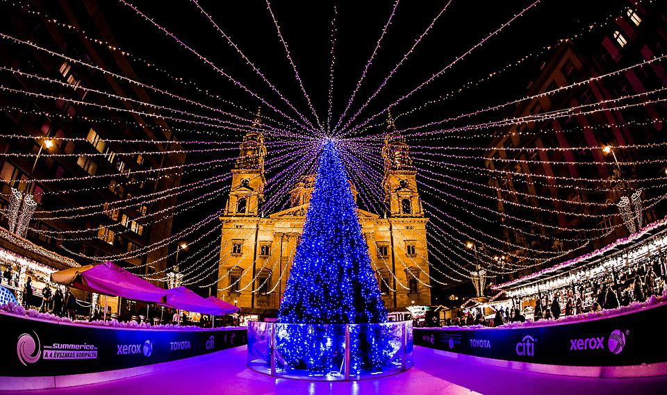 Budapest, Advent, Fair, At Night, Light, Christmas Tree