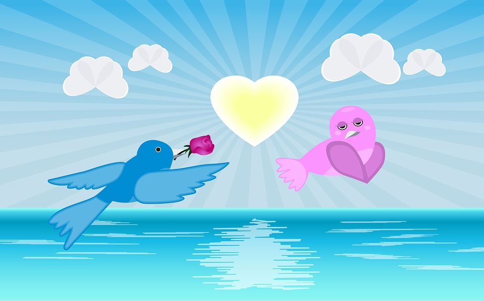 Flying Love Birds Images
