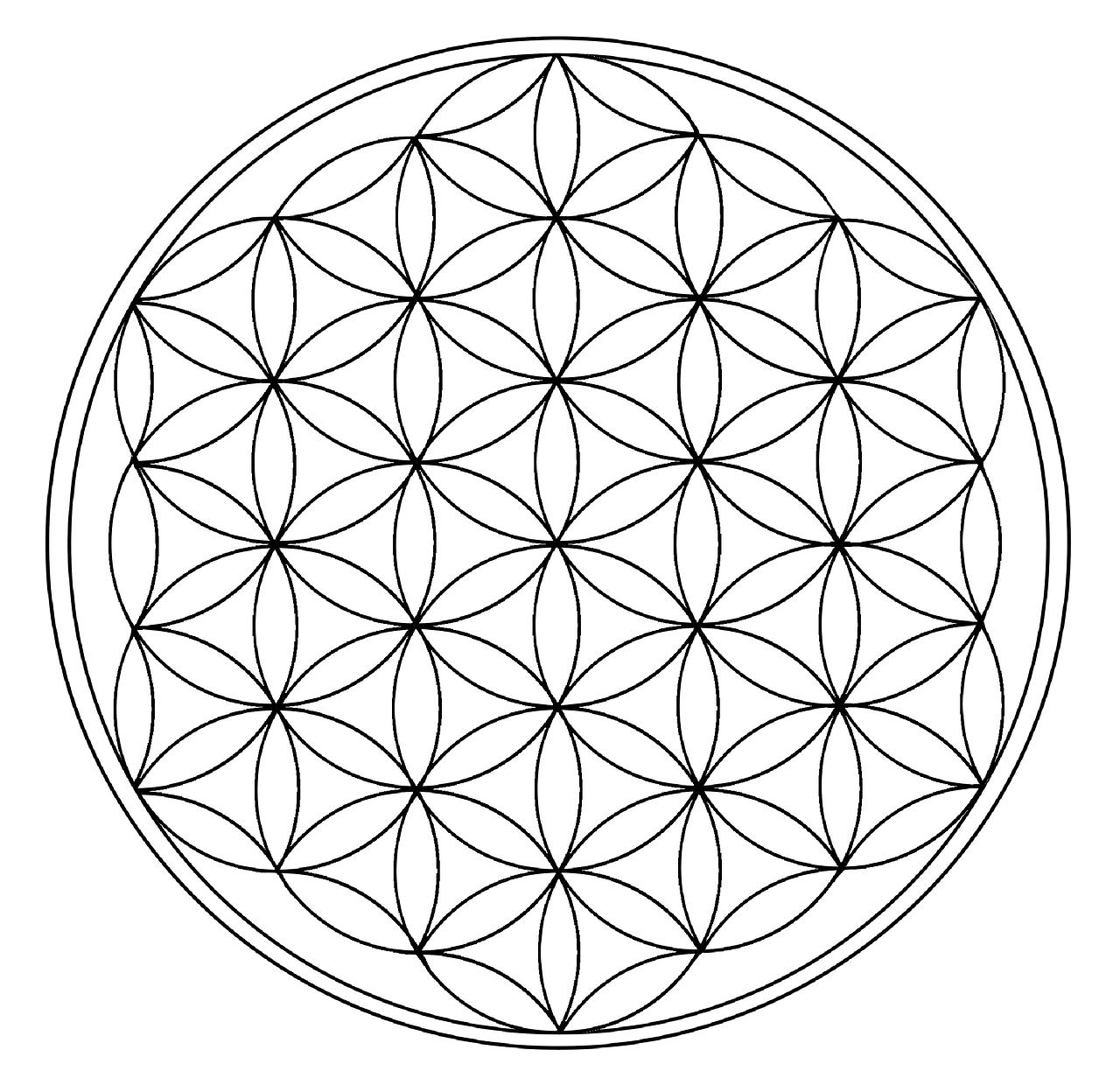 Fleur De Vie Geometrie Univers Image Gratuite Sur Pixabay