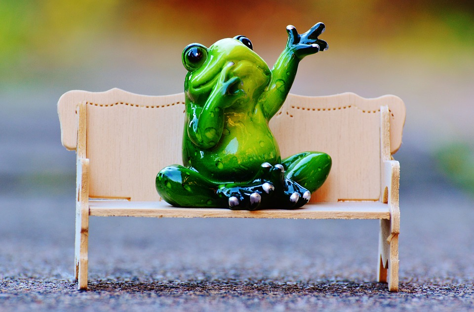 kostenloses foto frosch sitzbank entspannung ruhe. Black Bedroom Furniture Sets. Home Design Ideas