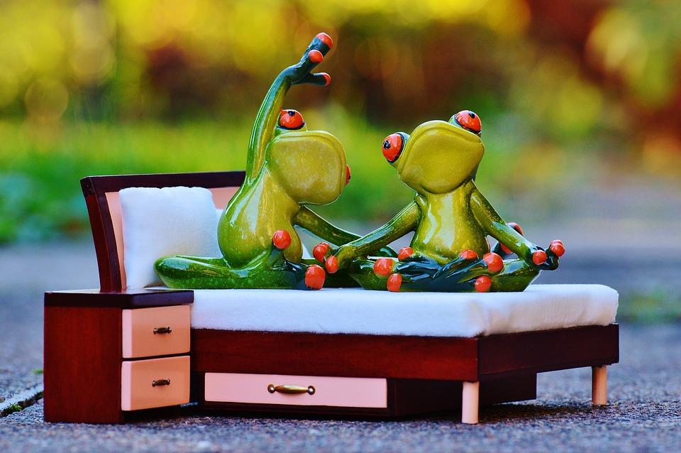 Kikker, Yoga, Bed, Figuur, Grappig, Cute, Liefde