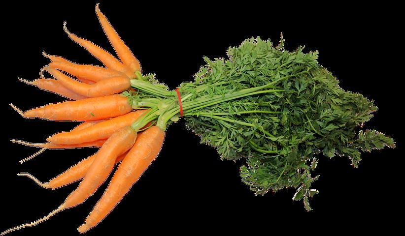 Картинки моркови на прозрачном фоне, картинки