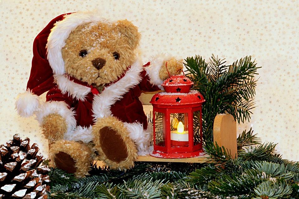 Teddy Weihnachten.Still Life Teddy Sitting Free Photo On Pixabay
