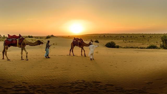 Desert Sand Camel 183 Free Photo On Pixabay