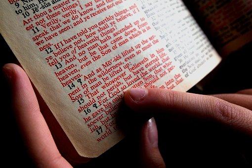 Bible, Hand, Designate, Read, Christian