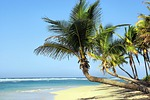 cuba, beach