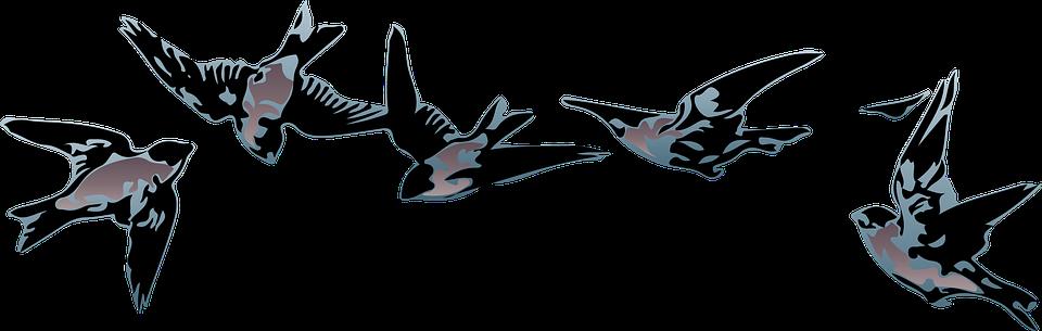 Free Illustration Birds Blue Flying Nature Animal