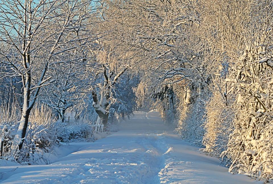 Photo gratuite hiver hivernal la neige image gratuite - Photos de neige gratuites ...