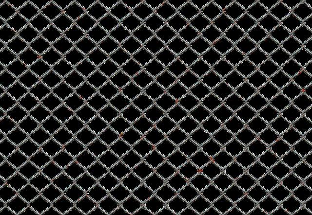 Wire Fence Transparent Wire Fence Transparent Pixabay Nongzico