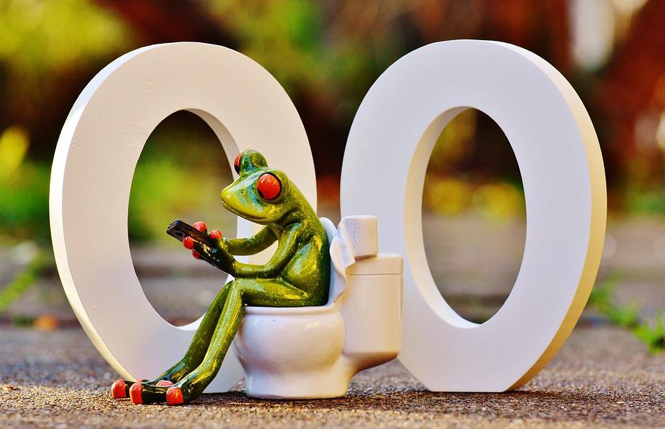 Wc 00 Toilet · Free photo on P...