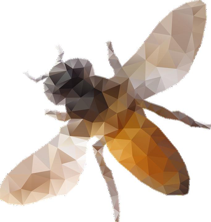 Biene Die Kunst Kostenlose Vektorgrafik Auf Pixabay