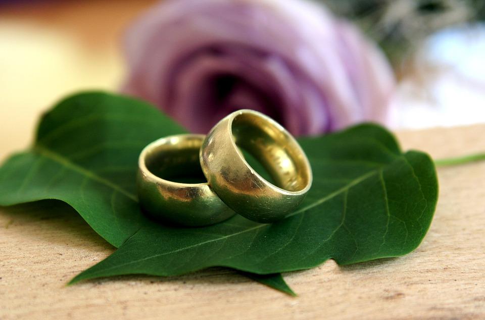 Trauringe hochzeit  Kostenloses Foto: Trauringe, Ringe, Hochzeit, Liebe - Kostenloses ...