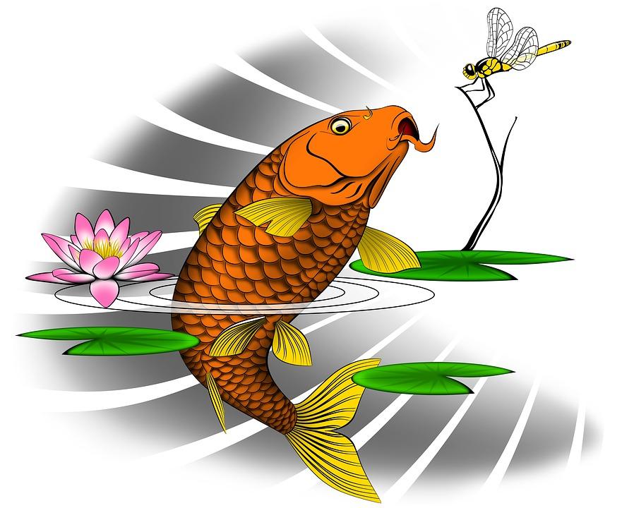 Carp Water Lily Japanese Free Image On Pixabay