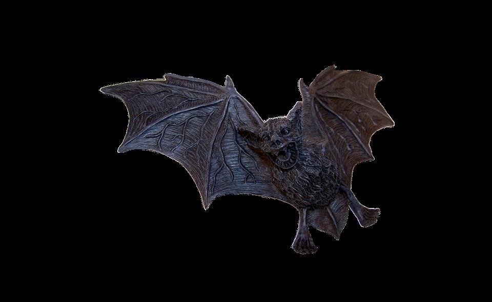 Free photo bat vampire decoration halloween free for Animated flying bat decoration