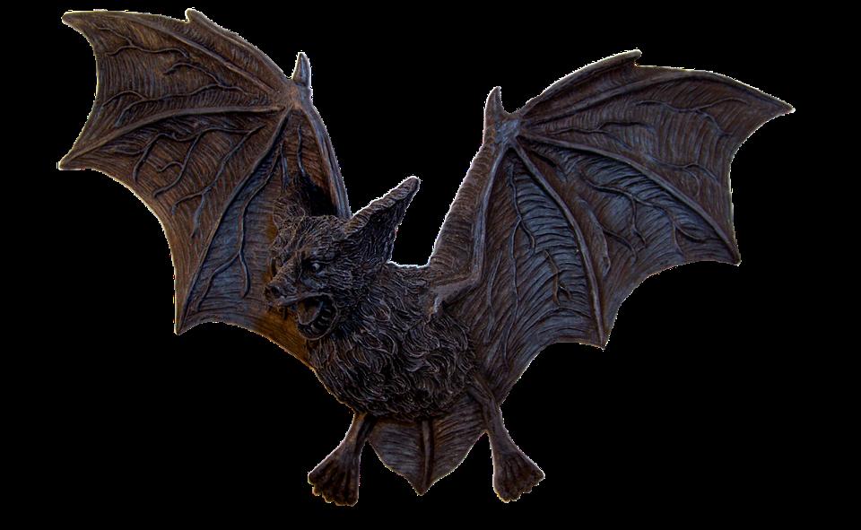 Bat, Vampire, Halloween, Flygande Hund, Flygande