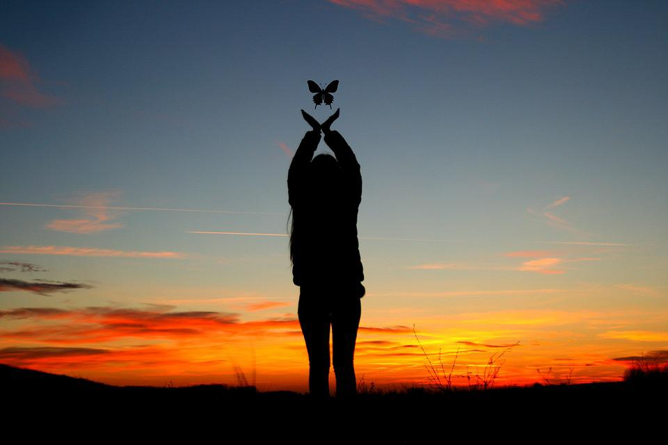 free photo sunset girl shadow butterfly   free image