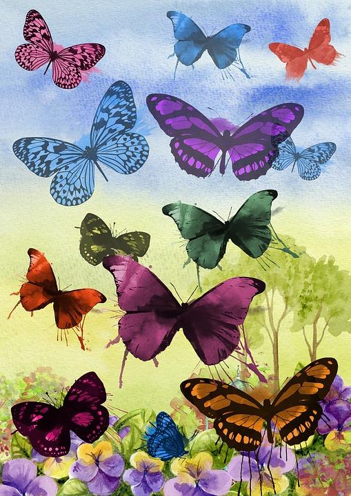 Kelebek Boyama Sanat Pixabayde ücretsiz Resim