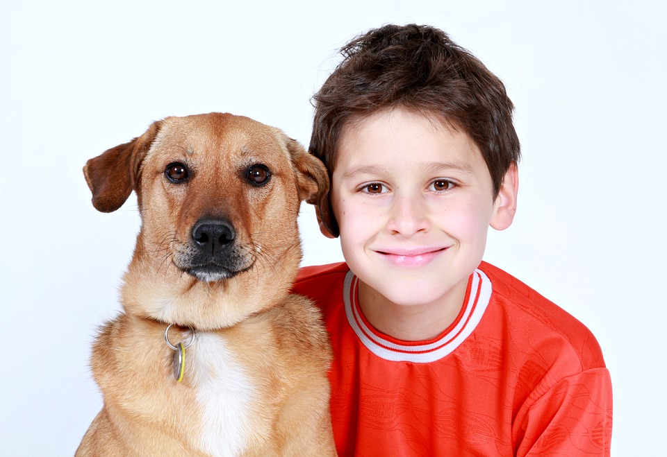 Pojke dodad av hundar