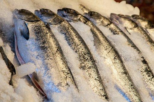 Мониторинг цен на рыбу в Приморье