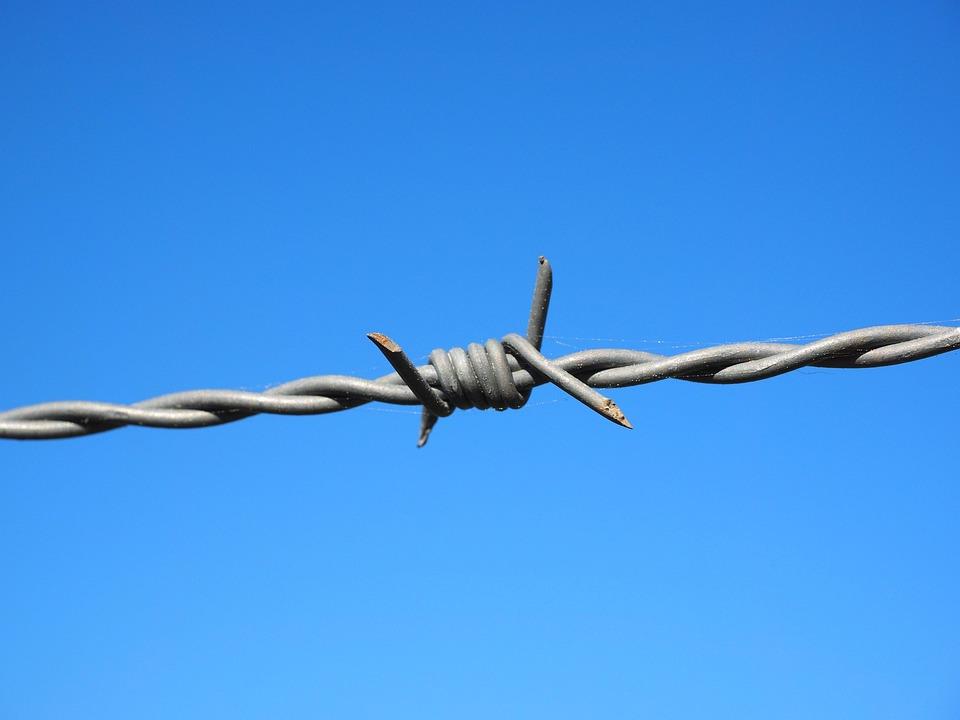 무료 사진: 가시 철사, 철사, 울타리, 금속, 보안, 가시, 경계 ...