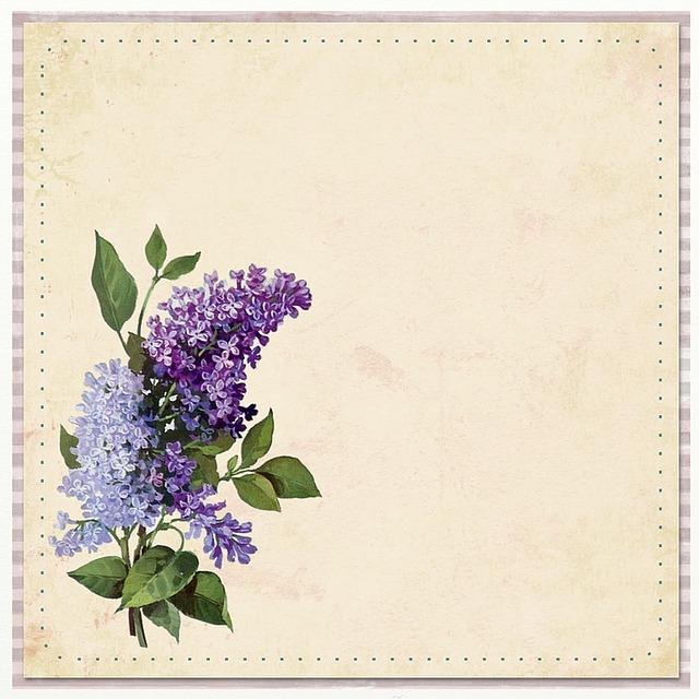 free illustration flower background purple free image