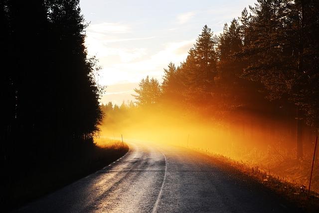 Free Photo Road Mist Sunrise Early Morning Free Image On Pixabay 1124373