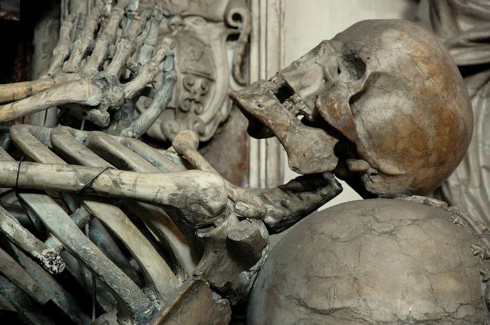 Morte Caveira Esqueleto Memento - Foto gratuita no Pixabay