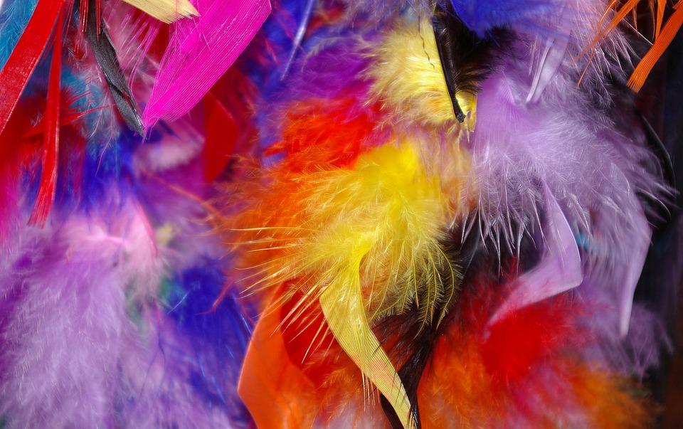 Pluma Plumas De Colores Carnaval · Foto gratis en Pixabay