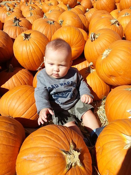 Peuter Halloween.Pompoenen Peuter Baby Gratis Foto Op Pixabay