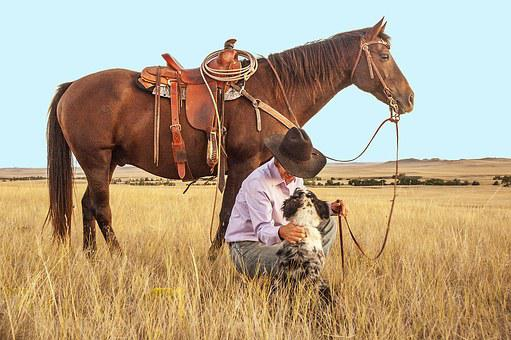 cowboy-1130695__340.jpg