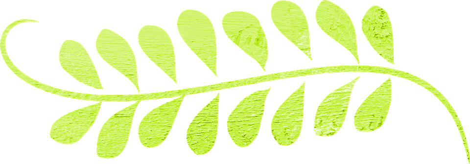 Leaf swirl green free image on pixabay leaf swirl green decoration border curly curves thecheapjerseys Image collections