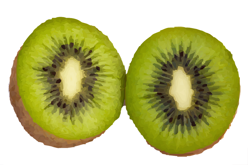 free illustration kiwi  fruit  food  fresh  diet free hollywood sign clipart blank wood sign clipart