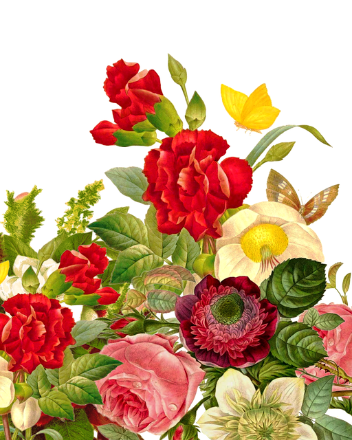 Flower Bouquet Rose Butterfly 183 Free Image On Pixabay