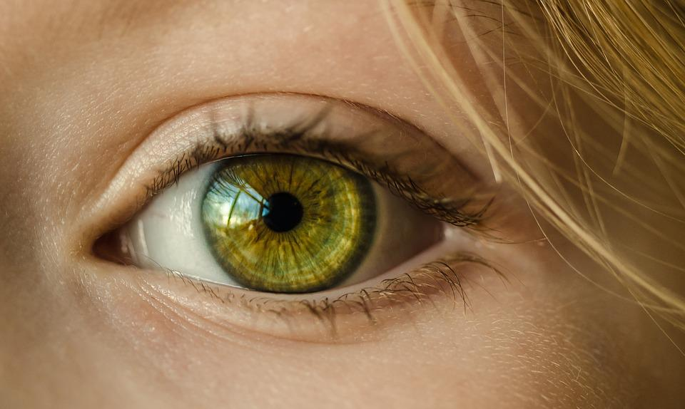 Eyes Images Pixabay Download Free Pictures