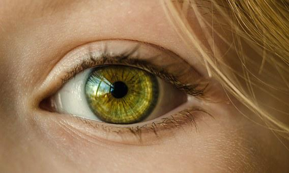 Eye, Iris, Look, Focus, Green, Close Up