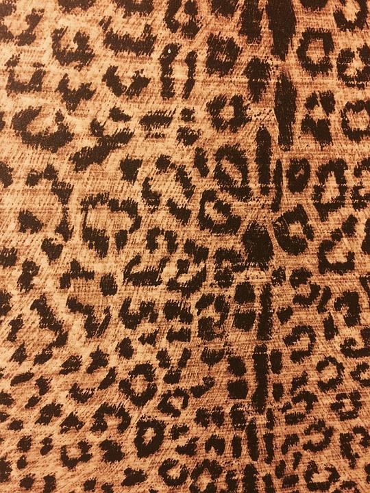 leopard print animal print backdrop animal leopard