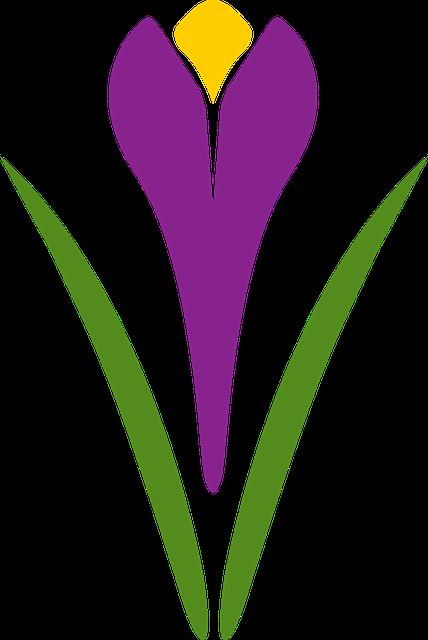 Safran logo vector