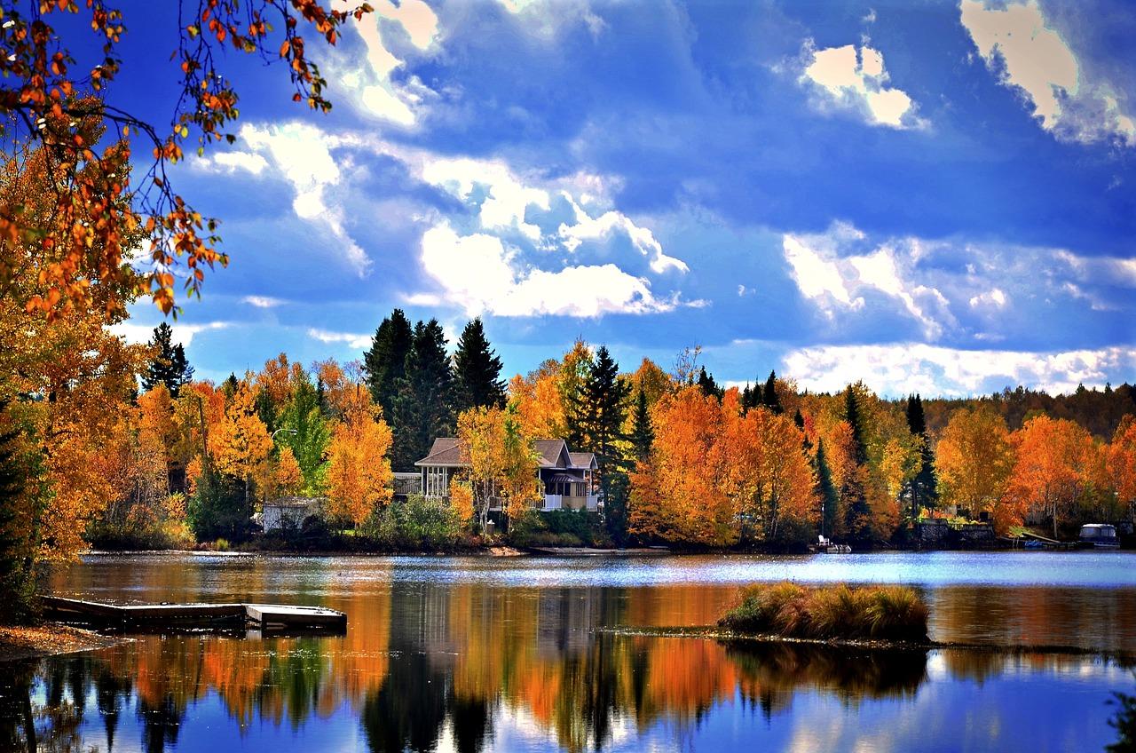 золотая осень лучшие фотопейзажи красочные кусты
