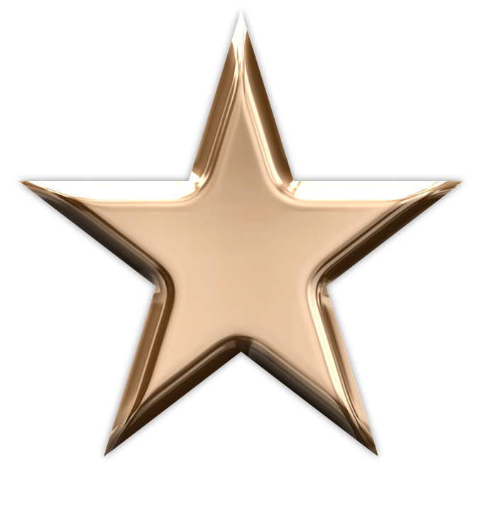 Star Bronze Winner Award Metal Success Metallic