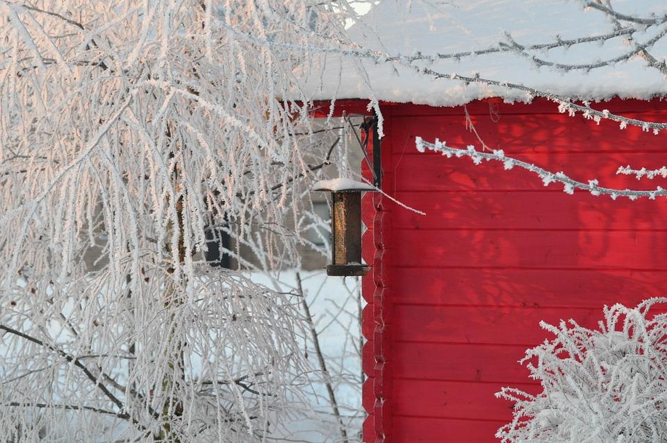 Winter, Schnee, Gartenhaus, Dezember