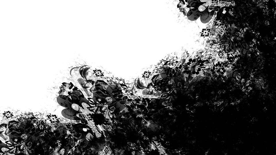 Floral Blume Bauernhof · Kostenloses Bild auf Pixabay
