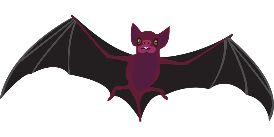 Bat Night Fly · Free vector graphic on Pixabay Vampire Cape Clipart