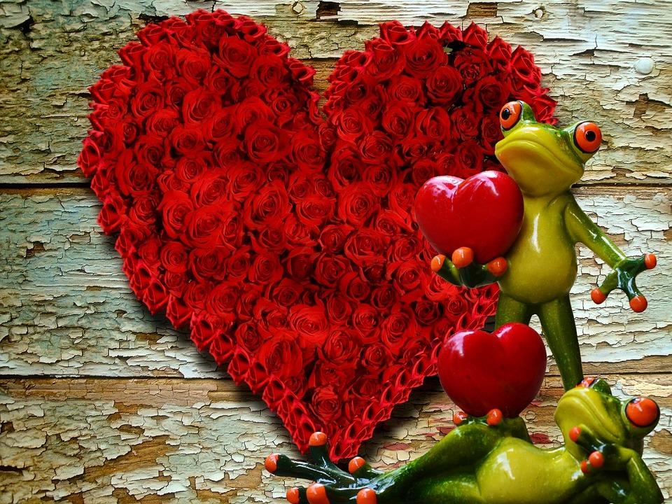 Amor partnersuche