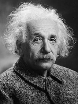 Albert Einstein, Ritratto