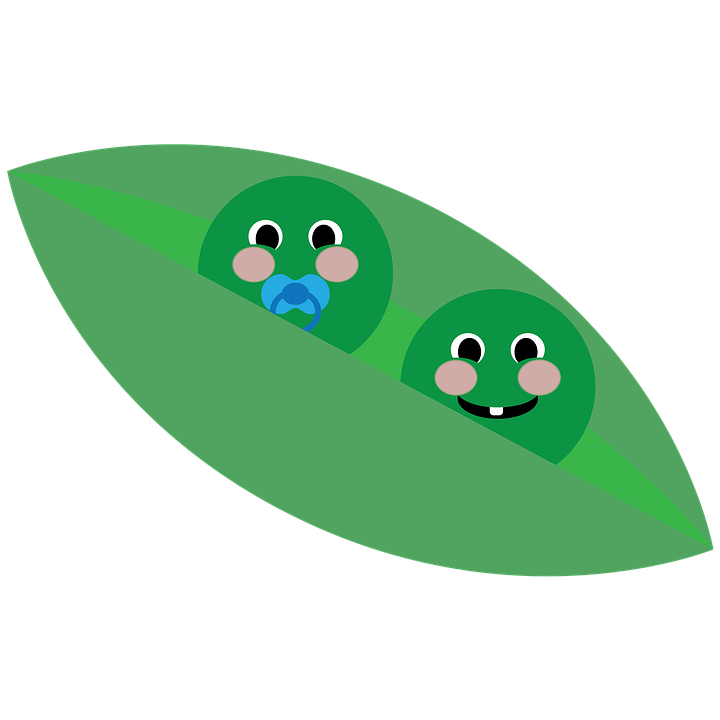 Twins Two Peas In A Pod Pea Free Image On Pixabay