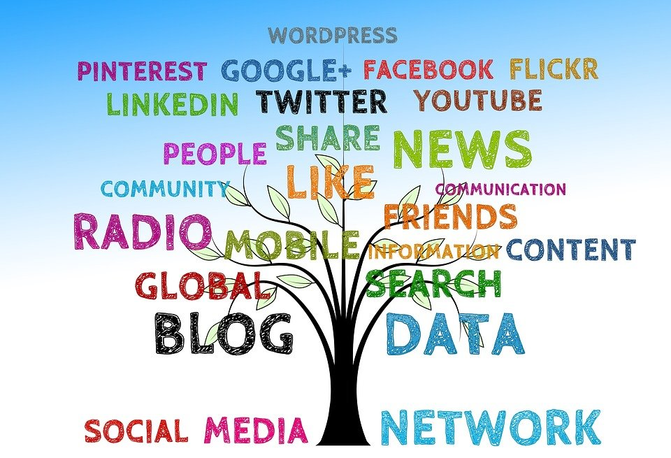 Tree, Social, Media, Structure, Networking