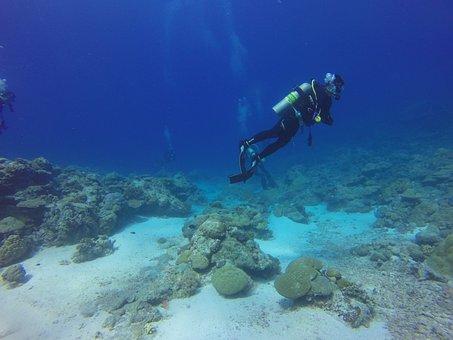 Duik, Duiker, Scuba, Palau, Scuba Diving